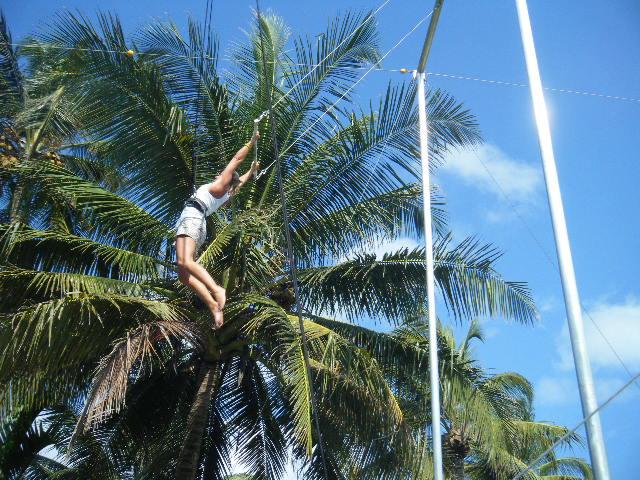 Caribbean Circus Camp