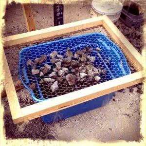 gravel for aquaponics
