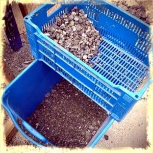 gravel for aquaponics system