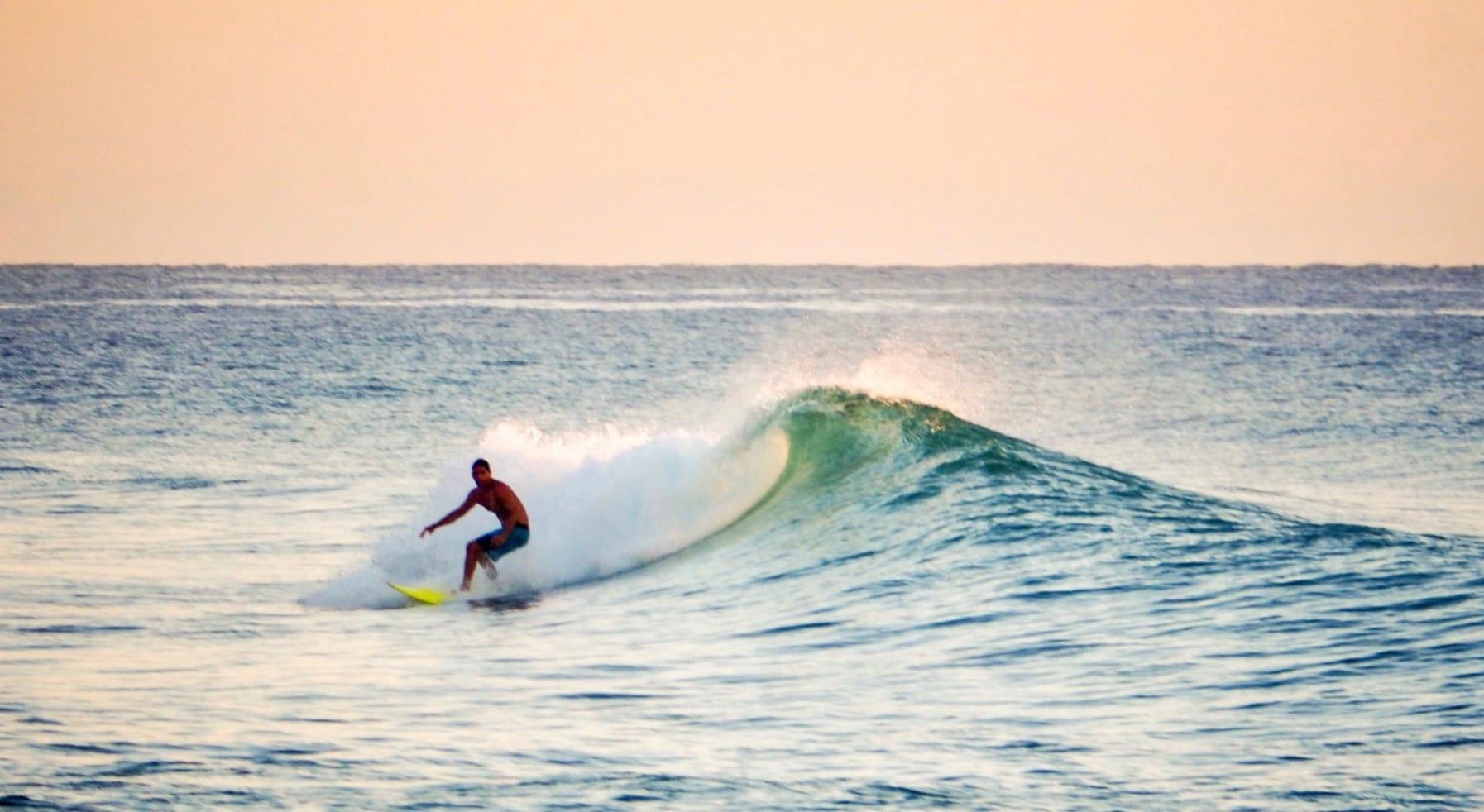 encuentro surfing
